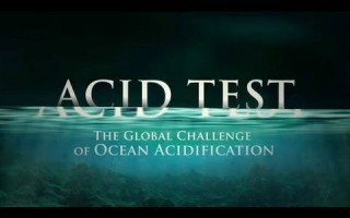 Acid Test: The Global Challenge of Ocean Acidification