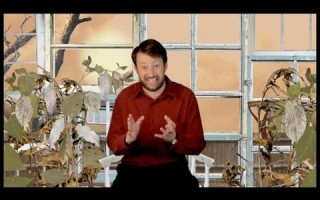 David Mitchell – Climate Change Doubters
